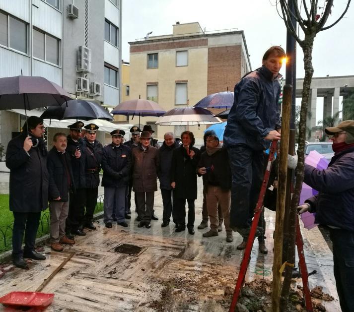 2016-12-20_cisl-piantati-gli-alberi-della-legalita-1